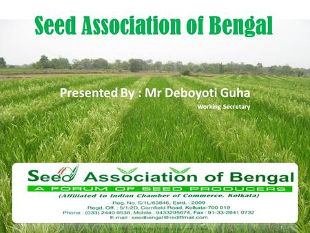 Presented By : Mr Deboyoti Guha Working Secretary Seed Association of Bengal.