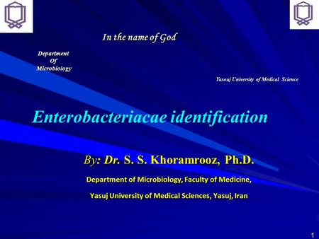 In the name of God By: Dr. S. S. Khoramrooz, Ph.D. Department of Microbiology, Faculty of Medicine, Yasuj University of Medical Sciences, Yasuj, Iran Enterobacteriacae.