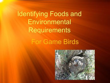 Identifying Foods and Environmental Requirements For Game Birds.