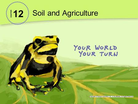 <strong>Soil</strong> <strong>and</strong> Agriculture 12 CHAPTER