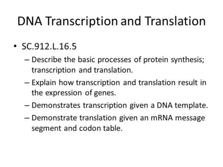 DNA Transcription and Translation SC.912.L.16.5 – Describe the basic processes of protein synthesis; transcription and translation. – Explain how transcription.