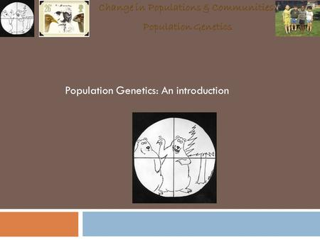 Population Genetics: An introduction Change in Populations & Communities: Population Genetics.