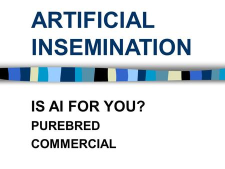 ARTIFICIAL INSEMINATION IS AI FOR YOU? PUREBRED COMMERCIAL.