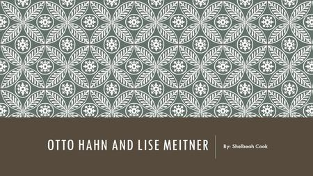 OTTO HAHN AND LISE MEITNER By: Shelbeah Cook. OTTO & LISE.