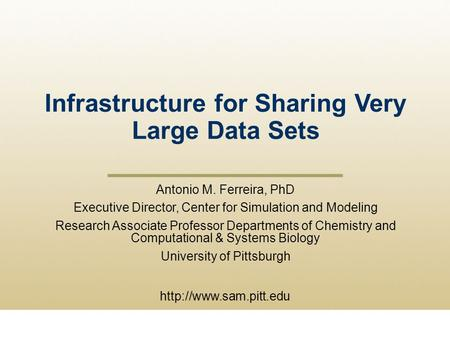 Infrastructure for Sharing Very Large Data Sets  Antonio M. Ferreira, PhD Executive Director, Center for Simulation and Modeling.