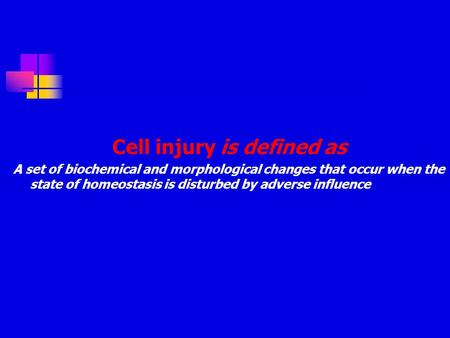 Cell injury is defined as A set of biochemical and morphological changes that occur when the state of homeostasis is disturbed by adverse influence.