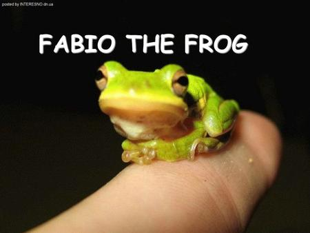 FABIO THE FROG. A long time ago, there was a leaf where Fabio the Frog lived. He was very sad, because he was a very tiny frog.