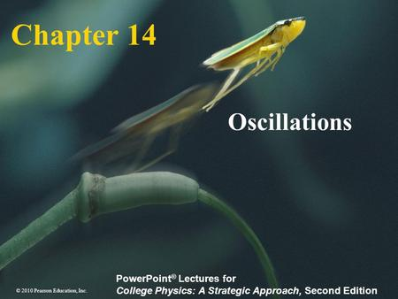 Chapter 14 Oscillations.