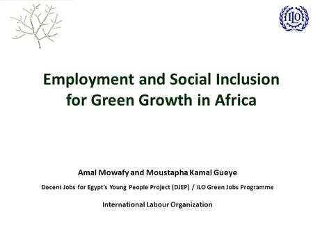 Employment and Social Inclusion for Green Growth in Africa Amal Mowafy and Moustapha Kamal Gueye Decent Jobs for Egypt's Young People Project (DJEP) /