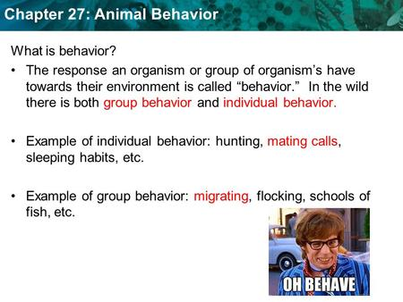 "What is behavior? The response an organism or group of organism's have towards their environment is called ""behavior."" In the wild there is both group."