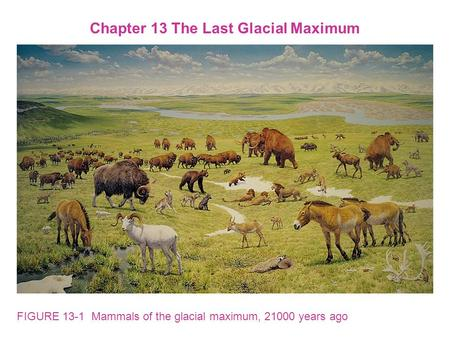 FIGURE 13-1 Mammals of the glacial maximum, 21000 years ago Chapter 13 The Last Glacial Maximum.