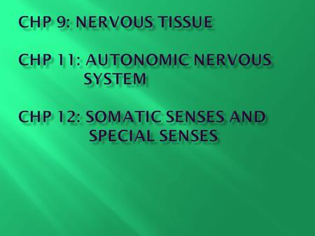 Chapter 9: Nervous Tissue Learning Objectives
