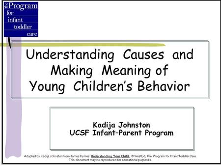 Understanding Causes and Making Meaning of Young Children's Behavior