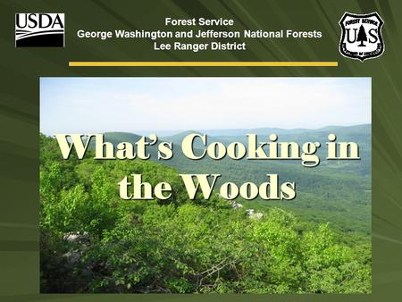 What's Cooking in the Woods