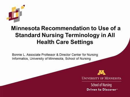Minnesota Recommendation to Use of a Standard Nursing Terminology in All Health Care Settings Bonnie L. Associate Professor & Director Center for Nursing.