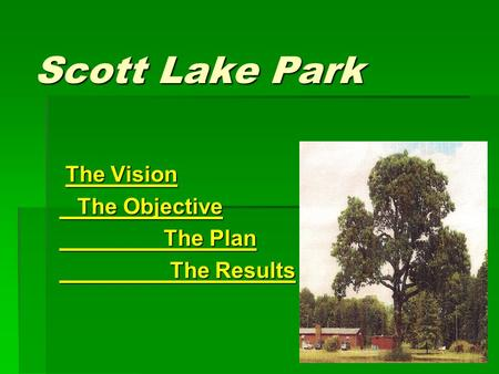 Scott Lake Park The Vision The Vision The Objective The Objective The Plan The Plan The Results The Results.
