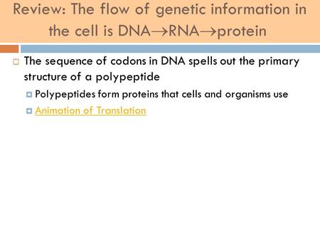 Review: The flow of genetic information in the cell is DNA  RNA  protein  The sequence of codons in DNA spells out the primary structure of a polypeptide.