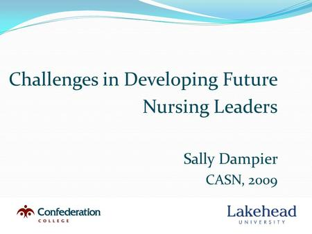 Challenges in Developing Future Nursing Leaders Sally Dampier CASN, 2009.