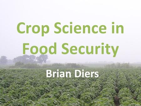 Crop Science in Food Security Brian Diers. Outline Role of Crop Science in food security Crop Sciences Department research on increasing crop production.