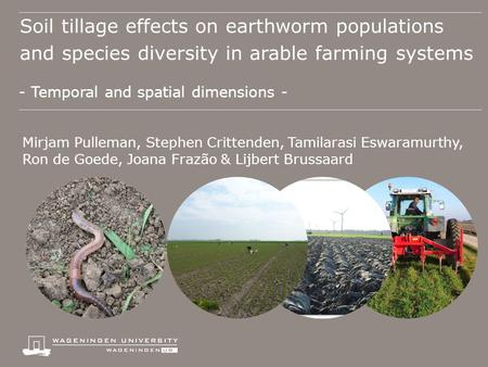 Soil tillage effects on earthworm populations and species diversity in arable farming systems - Temporal and spatial dimensions - Mirjam Pulleman, Stephen.