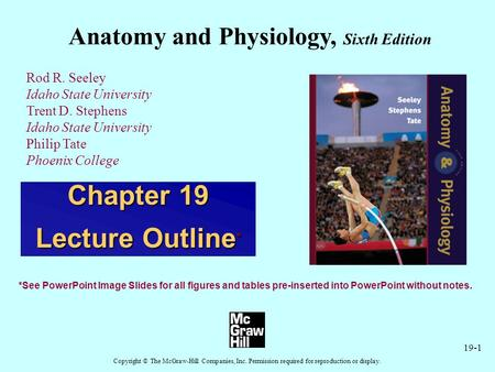 19-1 Anatomy and Physiology, Sixth Edition Rod R. Seeley Idaho State University Trent D. Stephens Idaho State University Philip Tate Phoenix College Copyright.
