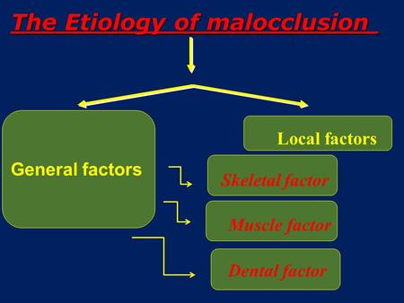 General factors The Etiology of malocclusion Local factors Skeletal factor Muscle factor Dental factor.
