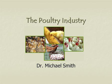 The Poultry Industry Dr. Michael Smith. U.S. Poultry Industry Broilers Broilers Eggs Eggs Turkey Turkey.