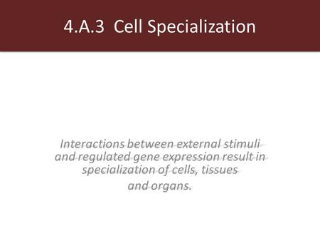 4.A.3 Cell Specialization Interactions between external stimuli and regulated gene expression result in specialization of cells, tissues and organs.