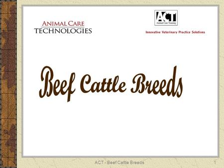 ACT - Beef Cattle Breeds1. 2 ANGUS British breed Scotland Polled Small calves Early maturing Red (Recessive) Black.