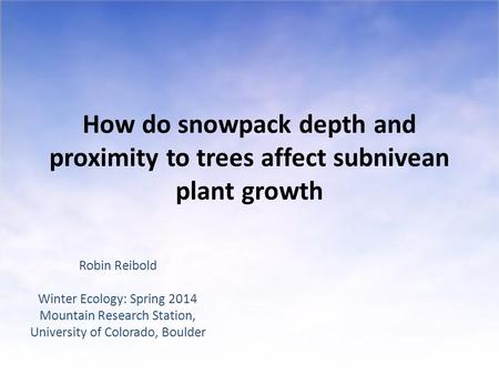 How do snowpack depth and proximity to trees affect subnivean plant growth Robin Reibold Winter Ecology: Spring 2014 Mountain Research Station, University.