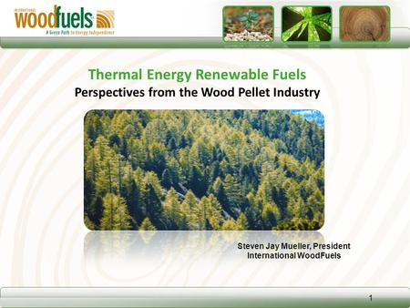 Steven Jay Mueller, President International WoodFuels