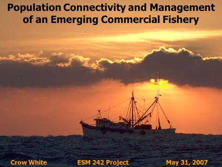 Population Connectivity and Management of an Emerging Commercial Fishery Crow White ESM 242 ProjectMay 31, 2007.