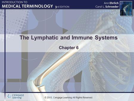 The Lymphatic and Immune Systems