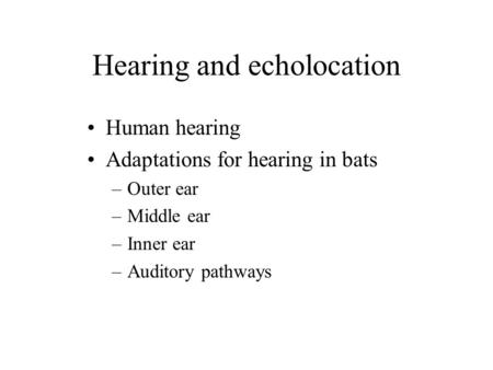 Hearing and echolocation