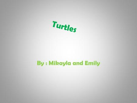 Turtles By : Mikayla and Emily NATIVE TURTLES Eastern box turtle Snapping turtle Eastern painted turtle Painted turtle Spotted turtle Blanding's turtle.