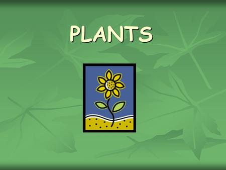 PLANTS PLANTS. What do plants need to grow ? WATER.
