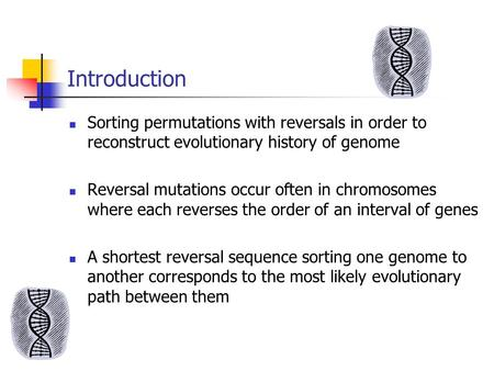 Introduction Sorting permutations with reversals in order to reconstruct evolutionary history of genome Reversal mutations occur often in chromosomes where.