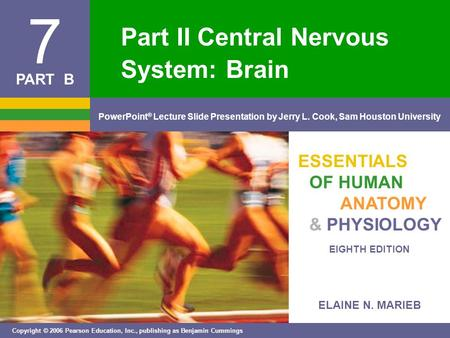 Part II Central Nervous System: Brain
