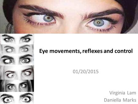 Eye movements, reflexes and control
