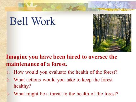 Bell Work Imagine you have been hired to oversee the maintenance of a forest. How would you evaluate the health of the forest? What actions would you take.