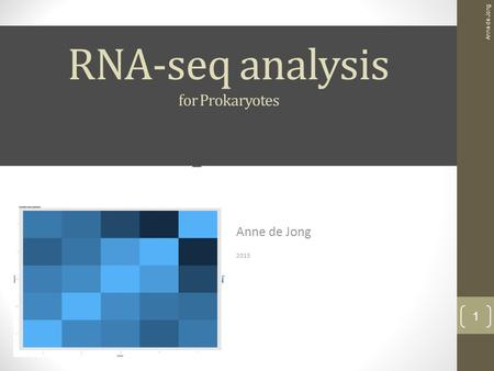 RNA-seq analysis case study Anne de Jong 2015