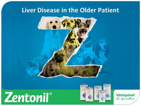 Liver Disease in the Older Patient. Agenda Liver Disease in the ageing patient Types Investigation Blood tests Others Treatment Antioxidants and Zentonil.