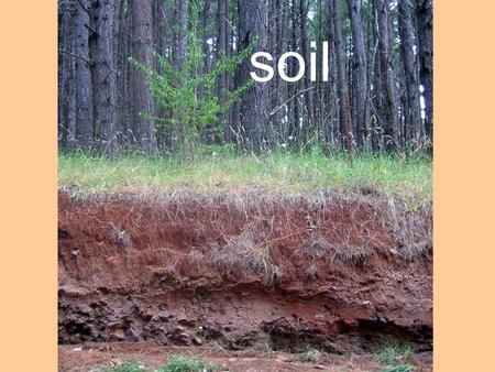 Soil. Soils SOIL is a dynamic system of living and nonliving components. DIRT is soil out of place.