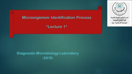Diagnostic Microbiology Laboratory -2015- Microorganism Identification Process *Lecture 1*