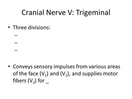 Cranial Nerve V: Trigeminal Three divisions: – Conveys sensory impulses from various areas of the face (V 1 ) and (V 2 ), and supplies motor fibers (V.
