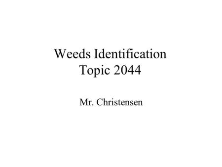Weeds Identification Topic 2044 Mr. Christensen. Why are weeds weeds? Weeds are plants out of place. Reduce crop Yields, compete for water, nutrients.