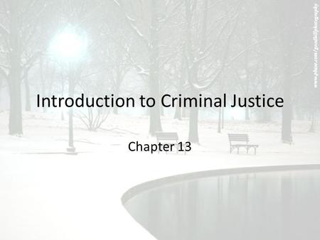 an introduction to the brief history of juvenile delinquency Introduction children with mental  juvenile delinquency statutes virginia's statute, for example,  mental health needs of juvenile offenders.