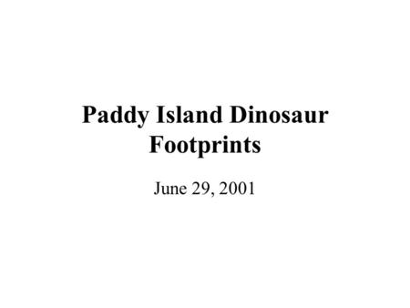 Paddy Island Dinosaur Footprints June 29, 2001. Tides and Weather Permitting…