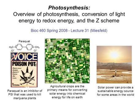 Photosynthesis: Overview of photosynthesis, conversion of light energy to redox energy, and the Z scheme Bioc 460 Spring 2008 - Lecture 31 (Miesfeld) Solar.