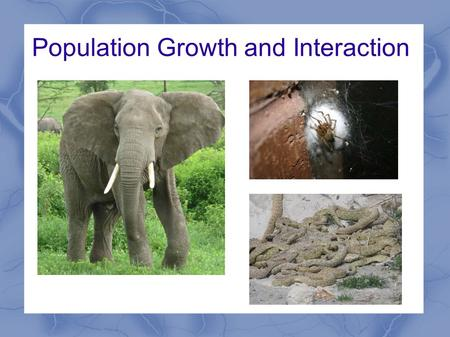 Population Growth and Interaction. Biotic Potential Highest possible per capita growth rate for a population. Factors which contribute to biotic potential.